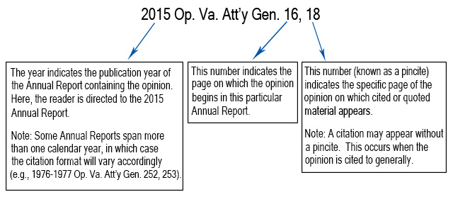 Graphic of a normal opinion citation.